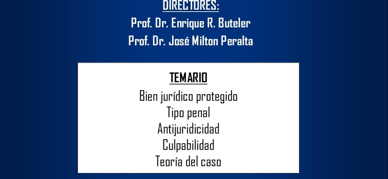 Curso Introductorio Penal V